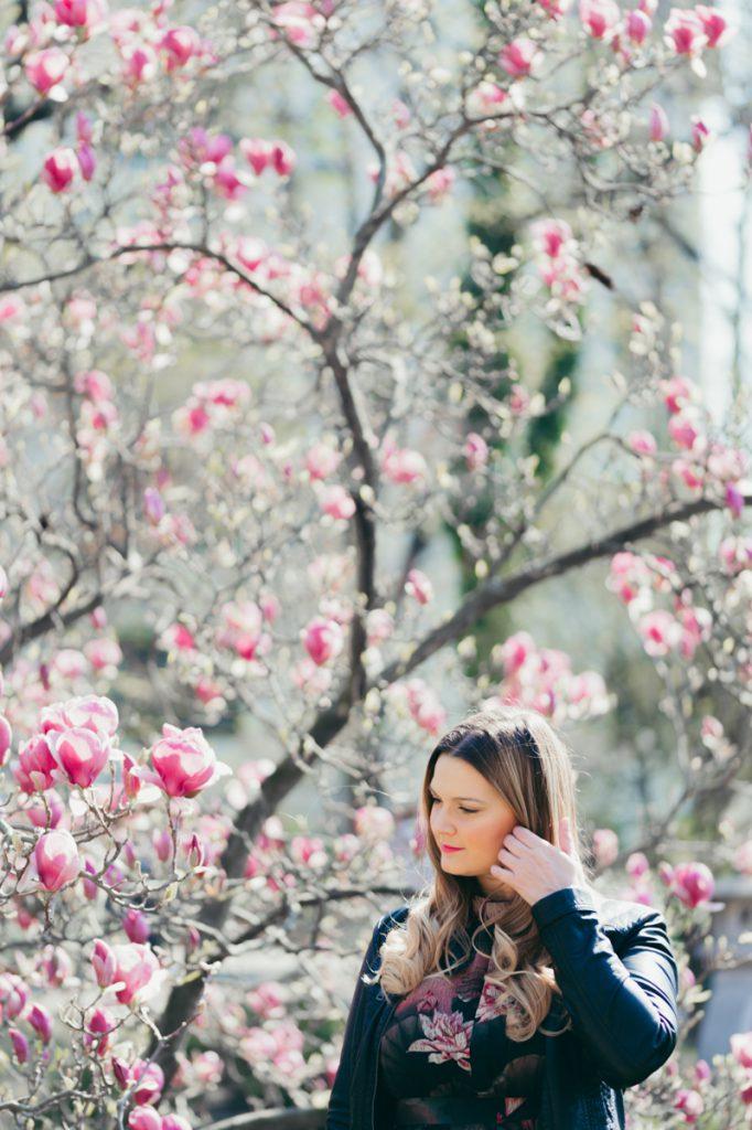 Kirschbluten Magnolien Wien Setagayapark